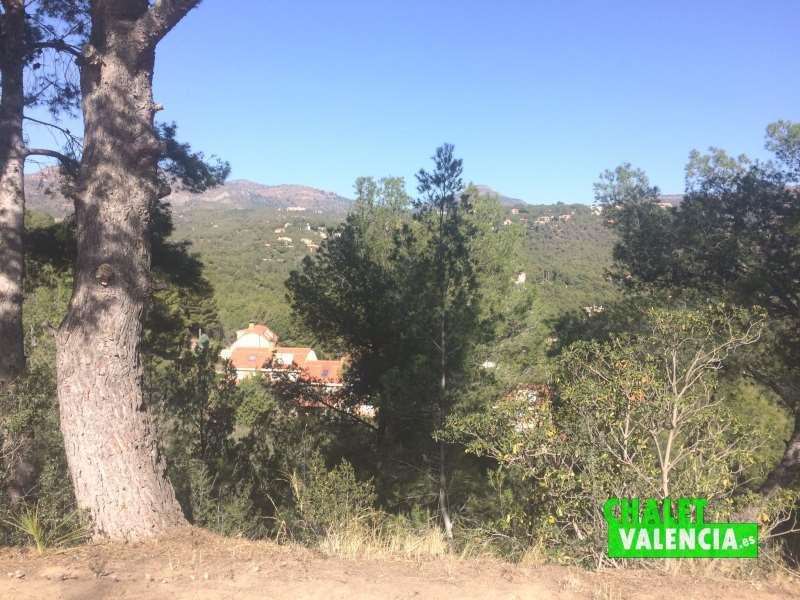 Bosque mediterráneo al norte chalet mansión