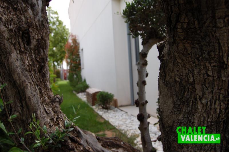 Vista fachada norte chalet desde olivo centenario decorativo