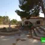 Chalet con pinada en urbanización Montesano