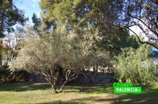 G10170-jardin-naquera-chalet-valencia