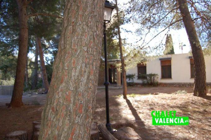 G10170-jardin-pinada-chalet-norte-chalet-valencia