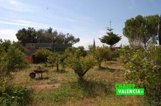 G12582-campo-naranjos-detalle-chalet-lliria-valencia