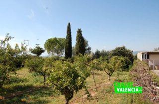 G12582-campo-naranjos-valla-chalet-lliria-valencia