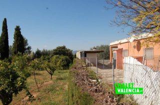G12582-campo-naranjos-valla-vecino-chalet-lliria-valencia