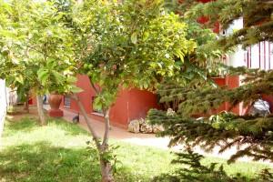 G13288-jardin-chalet-valencia