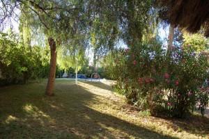 15210-jardin-4-chalet-valencia