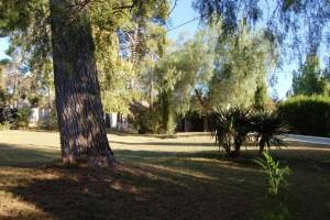 15210-jardin-pinada-2-chalet-valencia