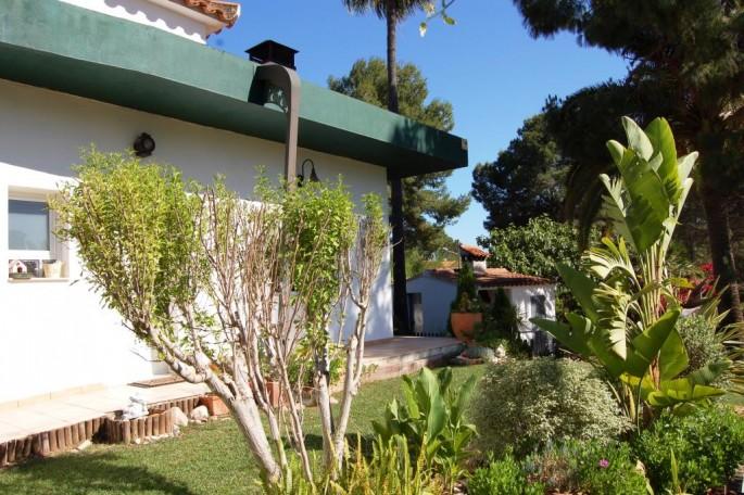 Jardín entrada casa