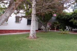 G14984-piscina-jardin-cesped-chalet-valencia