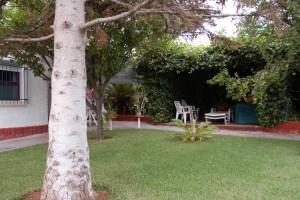 G14984-piscina-jardin-entrepinos-chalet-valencia