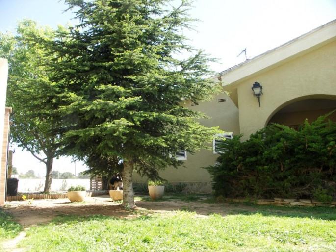 Jardín entrada terraza chalet