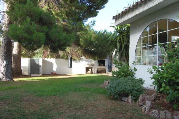 Jardín pinada y paellero junto cocina