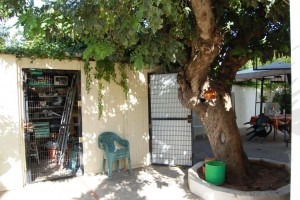 15442-lateral-oeste-trasterp-montesol-chalet-valencia
