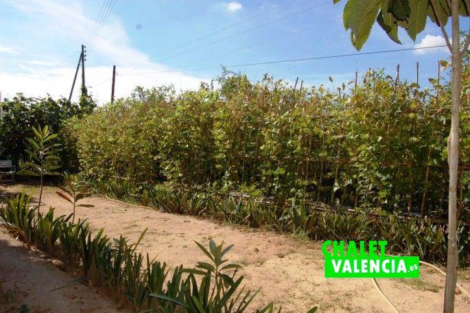 17716-jardin-5-chalet-valencia