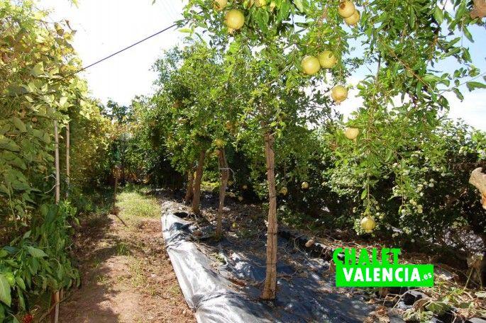 17716-jardin-51-chalet-valencia