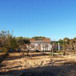 Casa de campo en Villamarchante con terreno de cultivo