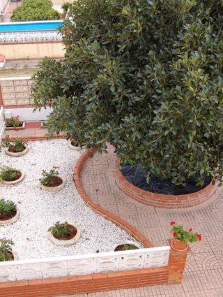 24098-_0080-olocau-chalet-valencia