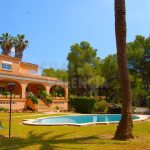 Villa with large garden with pine trees in Porta Coeli