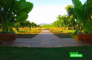 27675-jardines-y-campo-cultivo-chalet-valencia