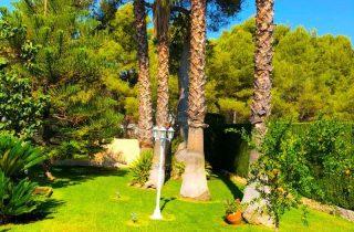 28563-jardin-palmeras-chalet-valencia