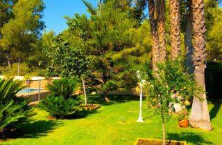 28563-jardin-palmeras-piscina-chalet-valencia