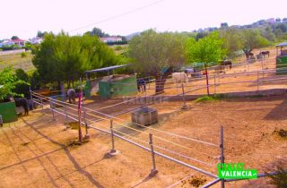 28844-vista-box-caballo-chalet-valencia