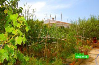 29378-jardin-ecologico-chalet-valencia