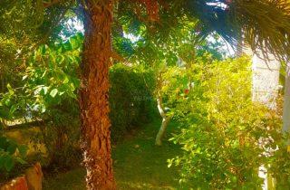 30076-jardin-chalet-valencia-montesol