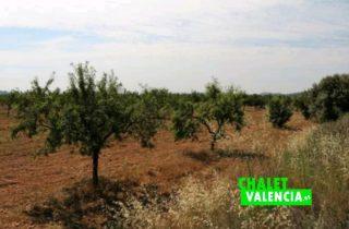 31467-campo-chalet-valencia