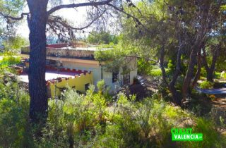 31656-casa-jardin-chalet-valencia