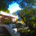 Rustic villa with pine trees in Olocau