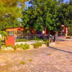 Chalet con encanto en Pedralba