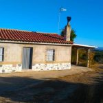 Villa for sale in Villamarchante with lots of land