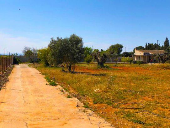 Chalet rústico con terreno en Betera