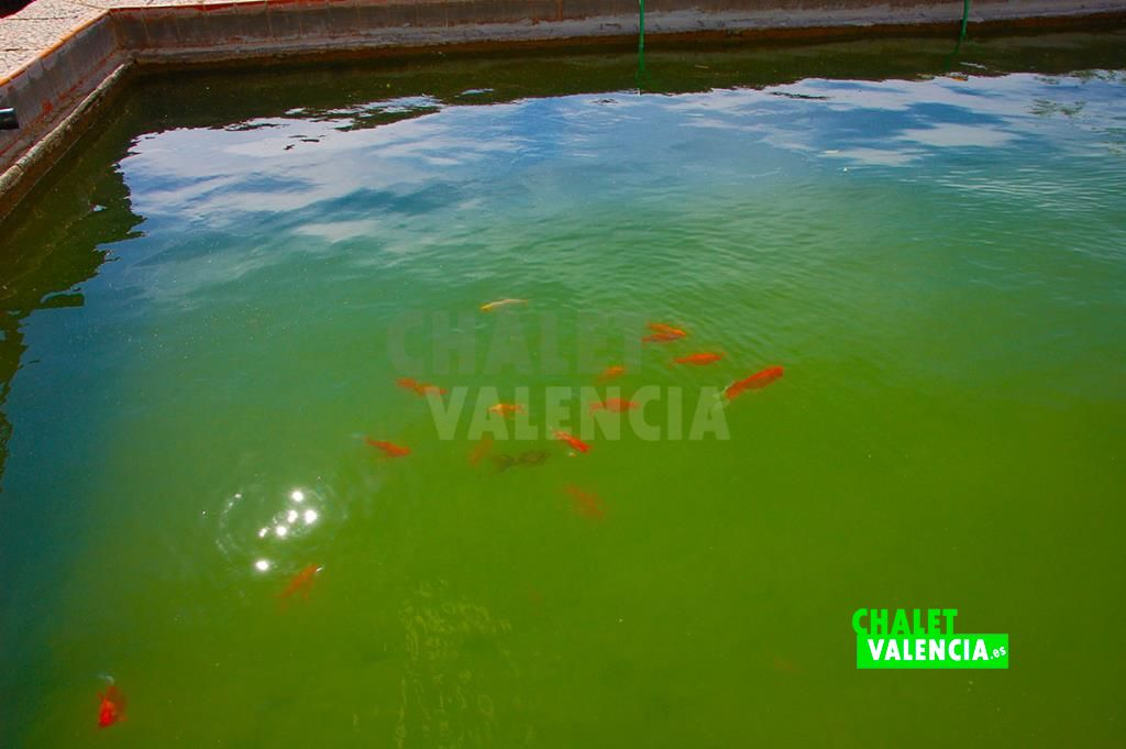 36554-8716-chalet-valencia