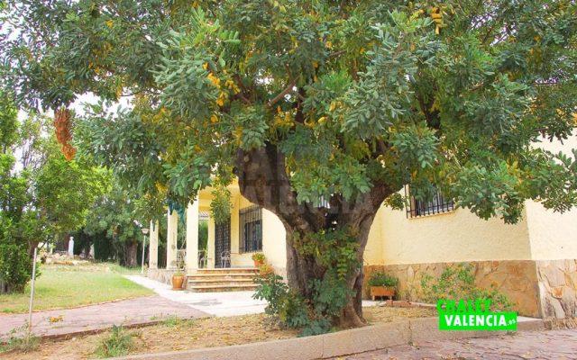 36796-8841-chalet-valencia