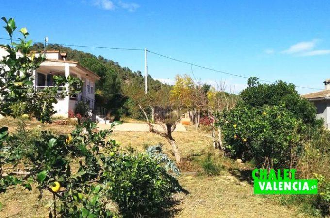 38359-exterior-cultivo-chalet-valencia