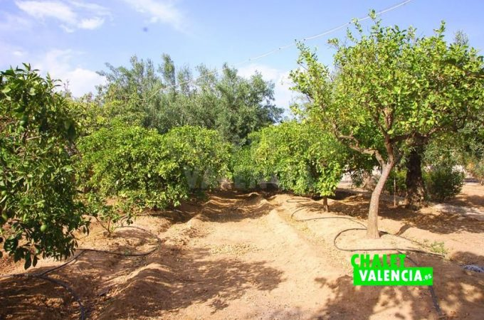 38781-0257-chalet-valencia
