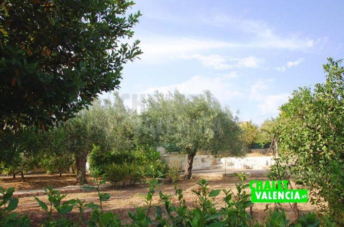 38781-0273-chalet-valencia