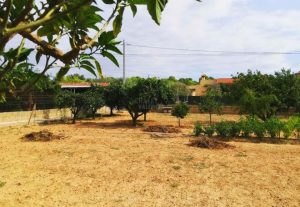 Chalet con terreno para cultivo en Lliria