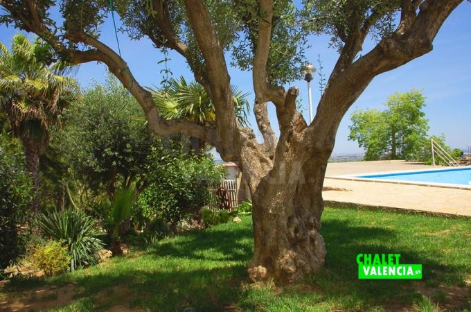 39212-8808-chalet-valencia