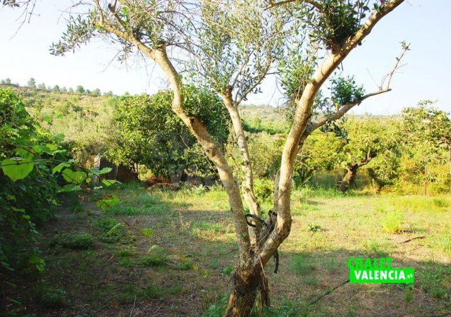 39648-0859-chalet-valencia