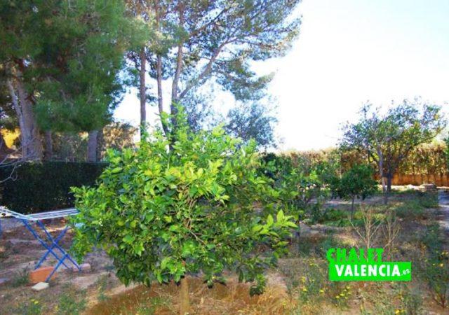 40473-jardin-1-chalet-Valencia-chalet-valencia