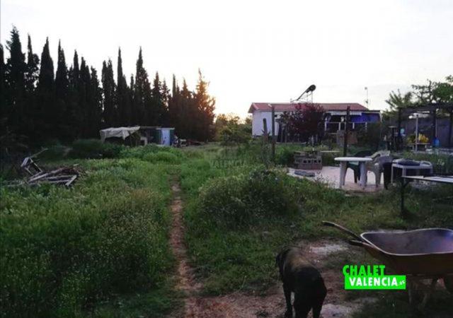 41242-jardin-casa-liria-chalet-valencia