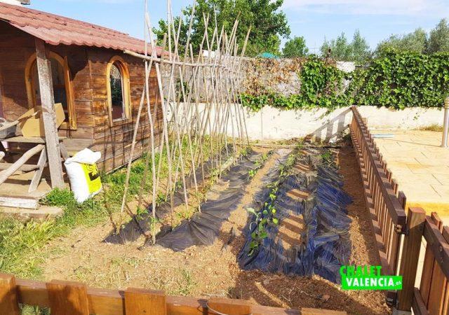 41722-huerto-cultivo-chalet-valencia-pobla-vallbona