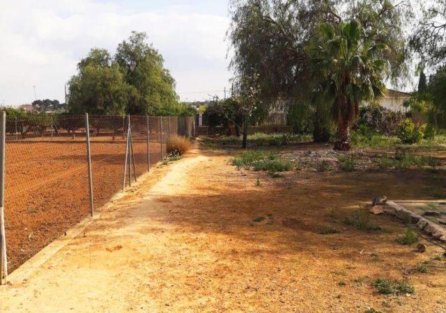 42126-exterior-jardin-ribarroja-chalet-valencia