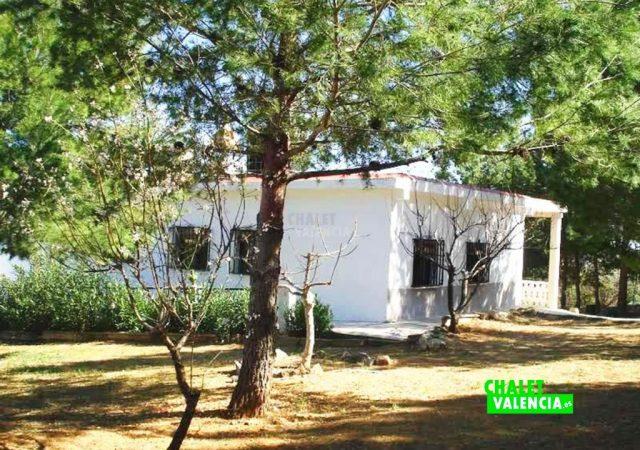 42146-jardin-casa-chalet-valencia