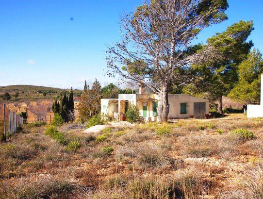 Chalet con terreno cultivo Alcublas