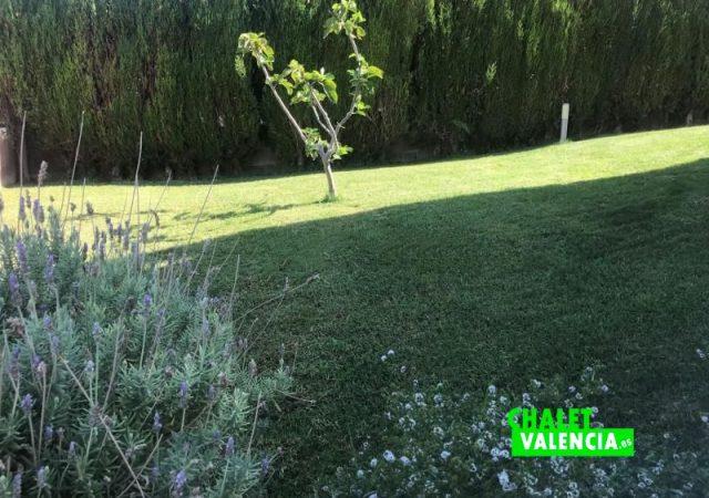 44630-jardin-2-chalet-valencia