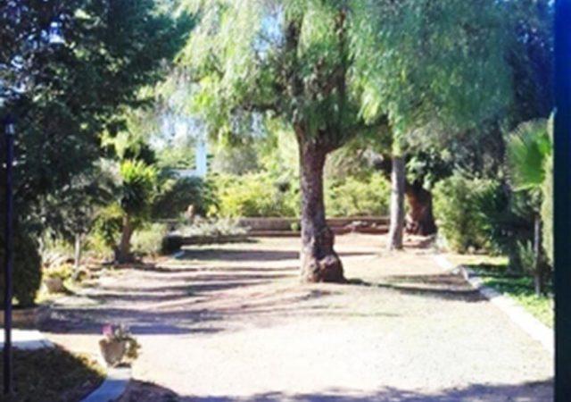 44832-entrada-jardin-chalet-valencia